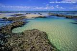 piscinas naturais, praia das fleixeiras, trairi, ce.jpg
