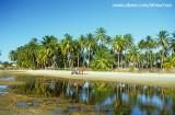 vida pacata da praia de Munda£, Trairi, CE.jpg