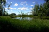 Joutsniemi - Leivonmaeki National Park, Finland