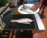Marinated Grilled Whole Red Snapper