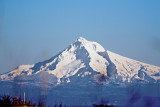 Jan 12 07 Mt. Hood from Col River 1.jpg