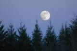 Feb 1 07 Moon-03.jpg