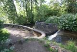 Portland's Tideman Johnson Nature Park