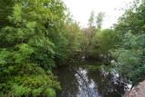 June 13 07 Johnson Creek Park -065.jpg