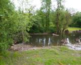 June 13 07 Johnson Creek Park -069.jpg
