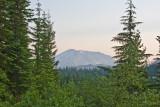 July 11 07 Mt St Helens-66.jpg
