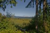 July 31 07 Mt St Helens --8.jpg