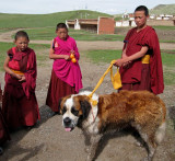 Monks and dog