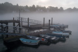 Morning at dock #1