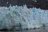 Margerie Glacier, Close up
