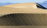 Death Valley 2007