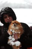 Feb 26e/07  Snowballs ! !