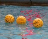 Queen's Water Polo