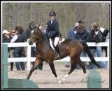 En Compétition -  Horse-show