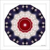 USA kaleidoscope 2 FW.jpg