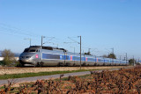A TGV Sud-Est at Cuers, heading to Marseille.