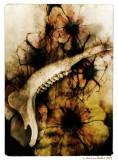 bones with flowers
