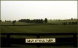 Man O' War Farm