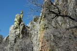 ARIZONA - MT. WRIGHTSON WILDERNESS - MT. WRIGHTSON