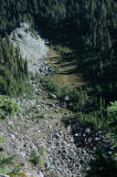 Looking Down on Meadow