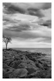 Lake Michigan 9