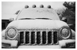 Portrait of a Jeep Liberty