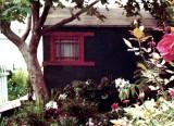 01093 scanpix shack.jpg