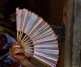 the Fan 2