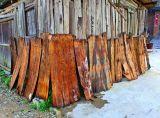 0262 Drying of Cunninghamia bark. ***Explanation***