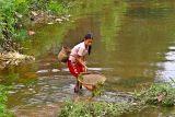 1210 Young girl netting fish.