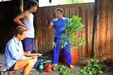 4274 Wu Shun Jun discussing herbal plants with Dr. Eisenberg and Dengtao.