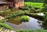 0368 Fish ponds.