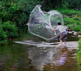 3582 Casting a weighted net for the small steam fish.