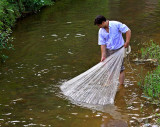 3575 Checking for fish after casting net.
