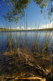 Brown Lake - Stradbroke Island II