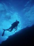 North Horn Osprey Reef  & Shark feed day 2 (16)