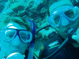 North Horn Osprey Reef  & Shark feed day 2 (25)