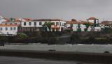 Madalena on Pico OZ9W0173