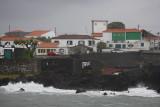 Madalena on Pico OZ9W0185