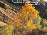 Psalm 124:8