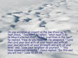 Luke 10:25-28
