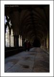 Walk in the cloisters