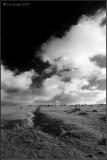 Moor at Sourton