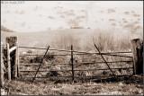 Gateway to moorland