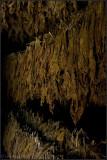 Tobacco Hanging