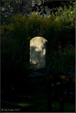 Single Grave