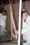 Discarding the organs from the snake