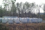 FEMA Trailers Just Waiting in a Storage Yard to be distributed to Katrina Vicitims