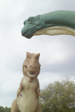 Dinosaur Tracks in Glen Rose Texas