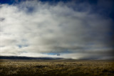 MacKenzie Country Fog